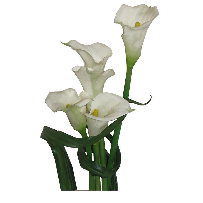 Crosswinds white flower arrangement el dorado furniture crosswinds white flower arrangement alternate image 2 of 4 images mightylinksfo