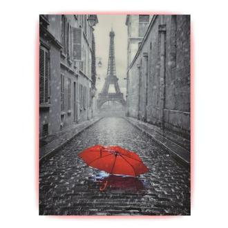 Umbrella Acrylic Wall Art