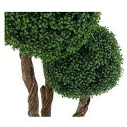 Bono Topiary Tree  alternate image, 3 of 4 images.