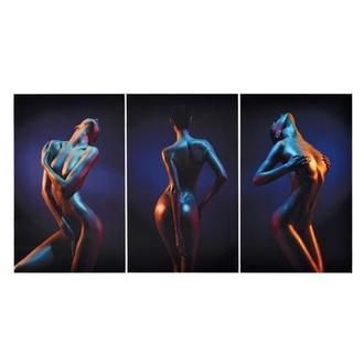 Trois Set of 3 Acrylic Wall Art