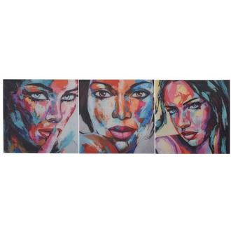 Beaute Set of 3 Acrylic Wall Art