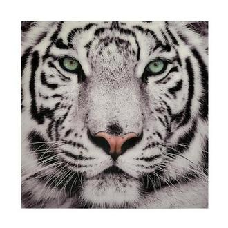 Tiger II Acrylic Wall Art