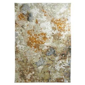 Evolution 6' x 9' Area Rug