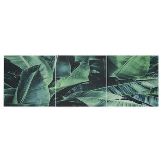 Jungle Set of 3 Acrylic Wall Art